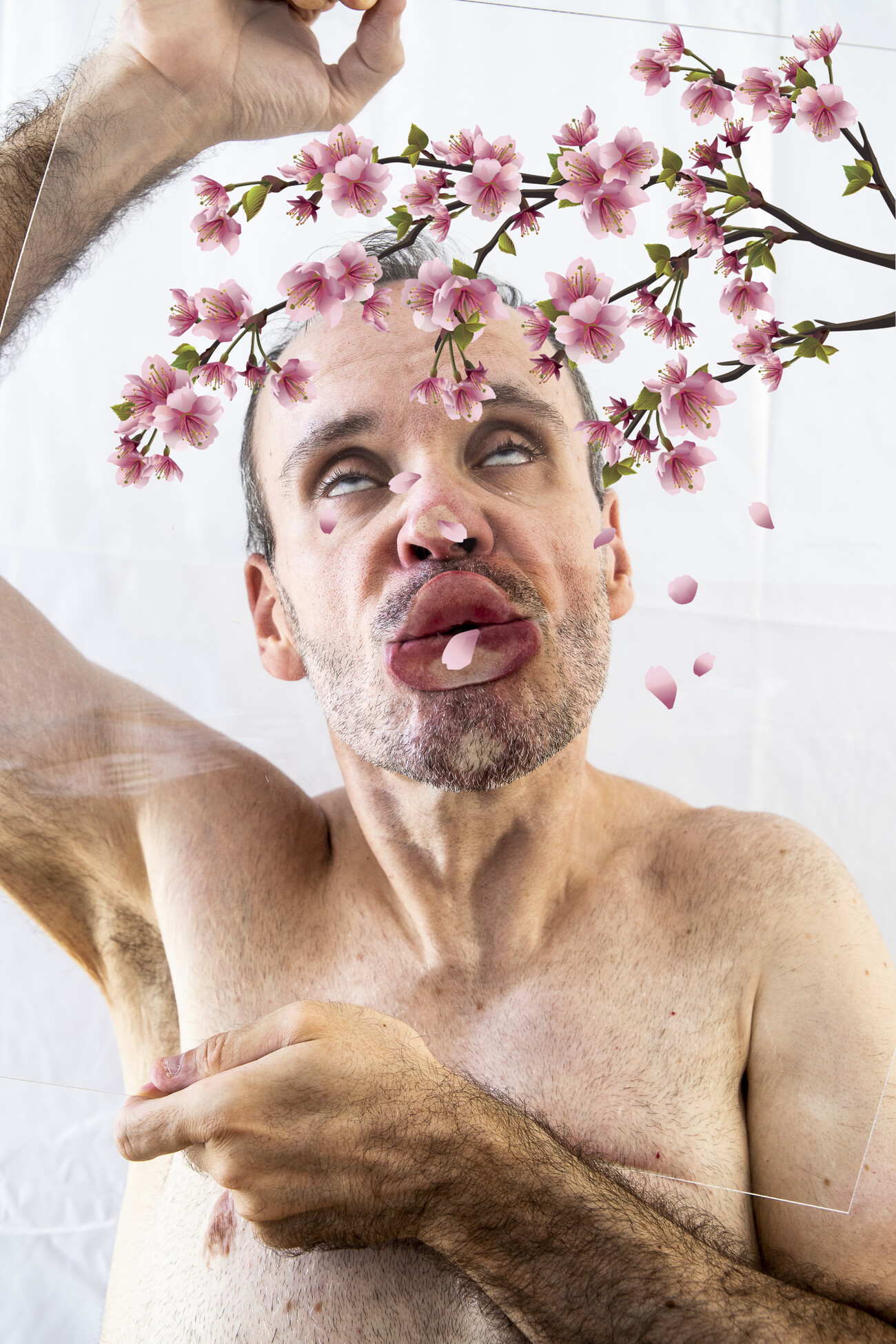 Steve Giasson. Performance invisible n° 182 (Décorer la vie (virtuelle) des autres). D'après Ana Mendieta. Untitled (Glass on Body Imprints). 1972. D'après Pipilotti Rist. Open My Glade (Flatten). 1er-31 janvier 2017. D'après Louise Lawler. Salon Hodler (Cherry Blossoms GIF). 1992/1993/2015. D'aprèsLouise Lawler. Pollyanna (Cherry Blossoms GIF). 2007/2008/2015. D'après Louise Lawler. Triangle (Cherry Blossoms GIF). 2008/2009/2015. D'après Steve Giasson. Performance invisible n° 181 (Faire impression (malgré tout)). 7-8 août 2020. Performeur : Steve Giasson. Crédit photographique : Martin Vinette et Steve Giasson (GIF). Retouches photographiques : Daniel Roy. 5 octobre 2020.